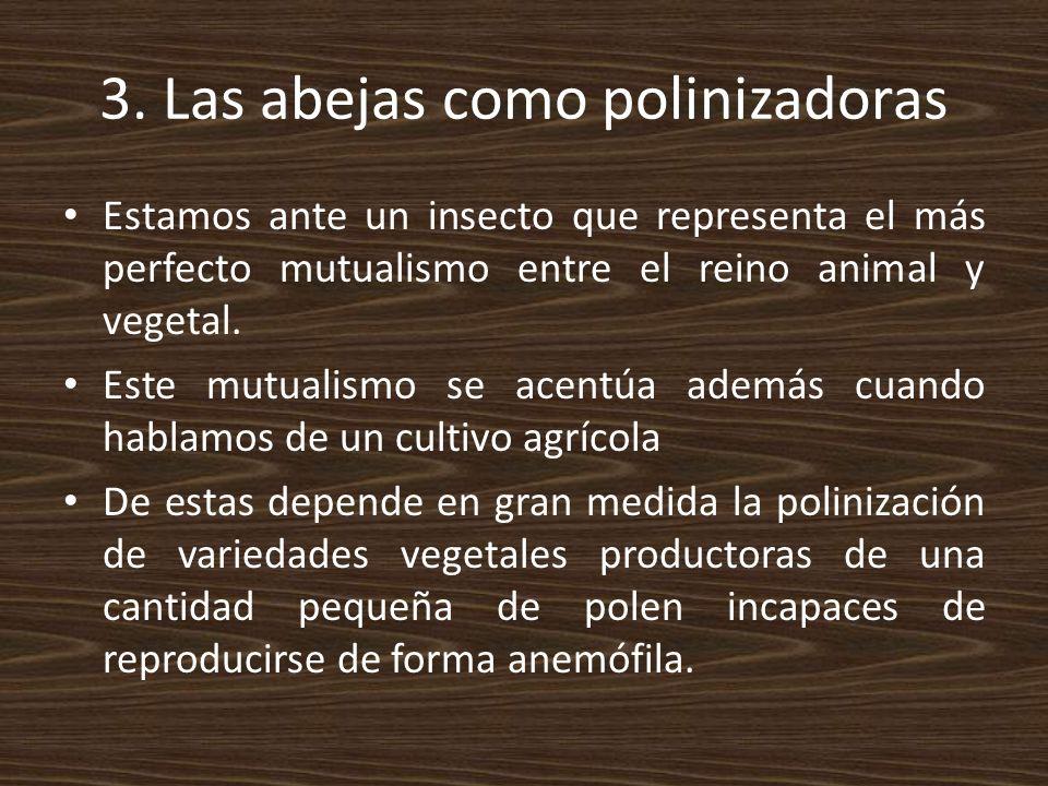 3. Las abejas como polinizadoras
