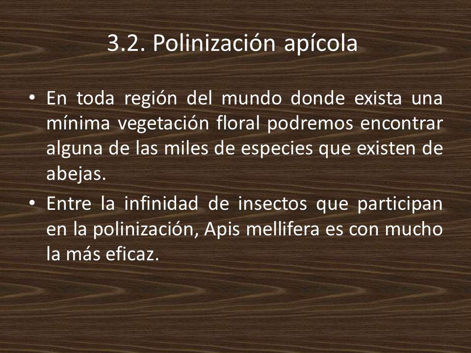 3.2. Polinización apícola