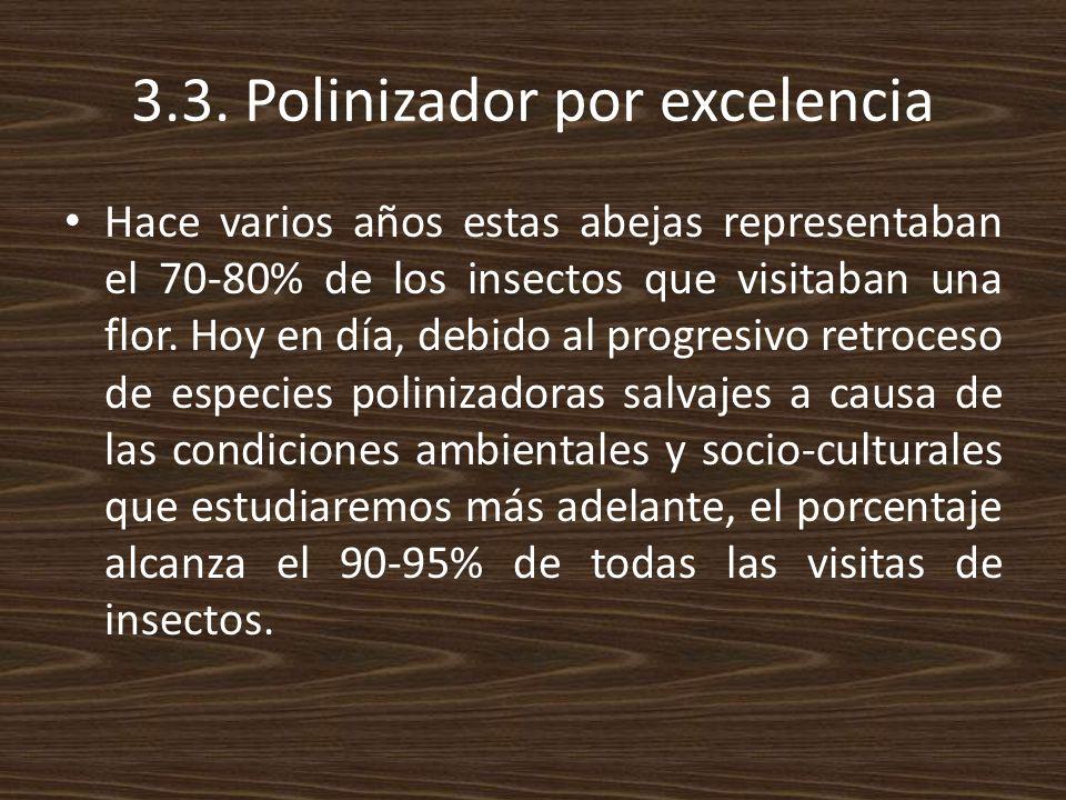 3.3. Polinizador por excelencia