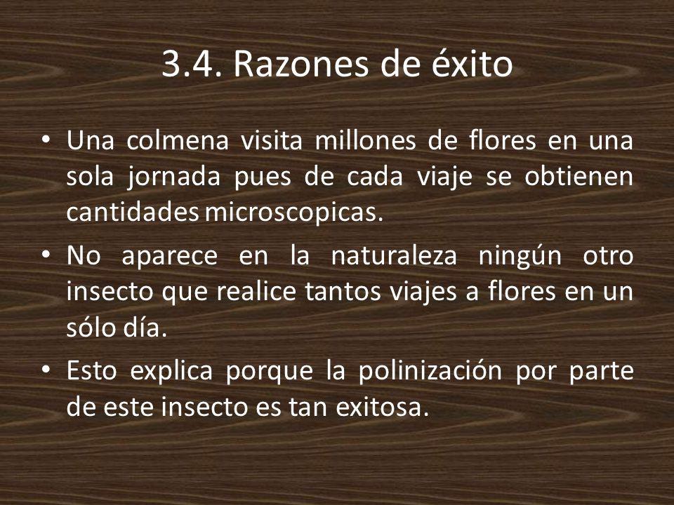 3.4. Razones de éxito Una colmena visita millones de flores en una sola jornada pues de cada viaje se obtienen cantidades microscopicas.