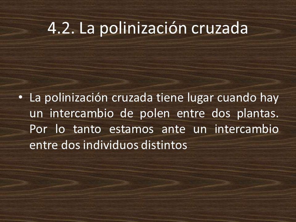 4.2. La polinización cruzada