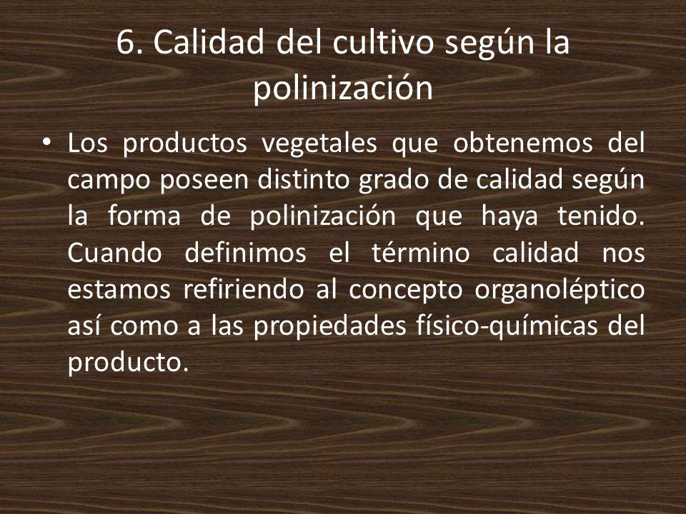 6. Calidad del cultivo según la polinización
