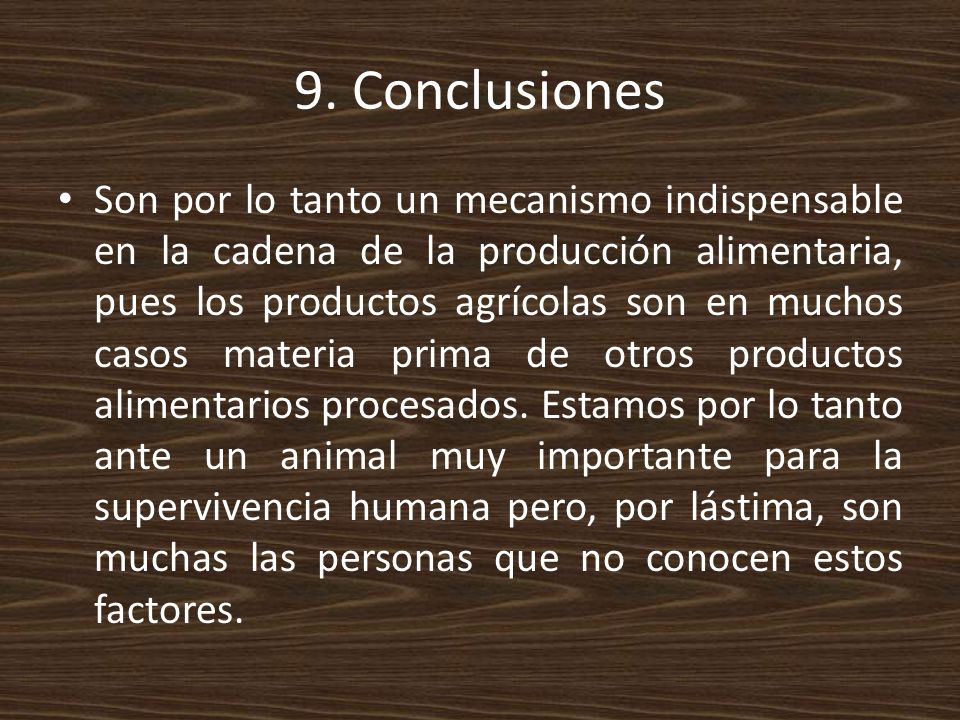 9. Conclusiones