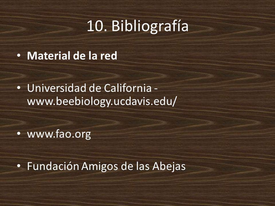 10. Bibliografía Material de la red