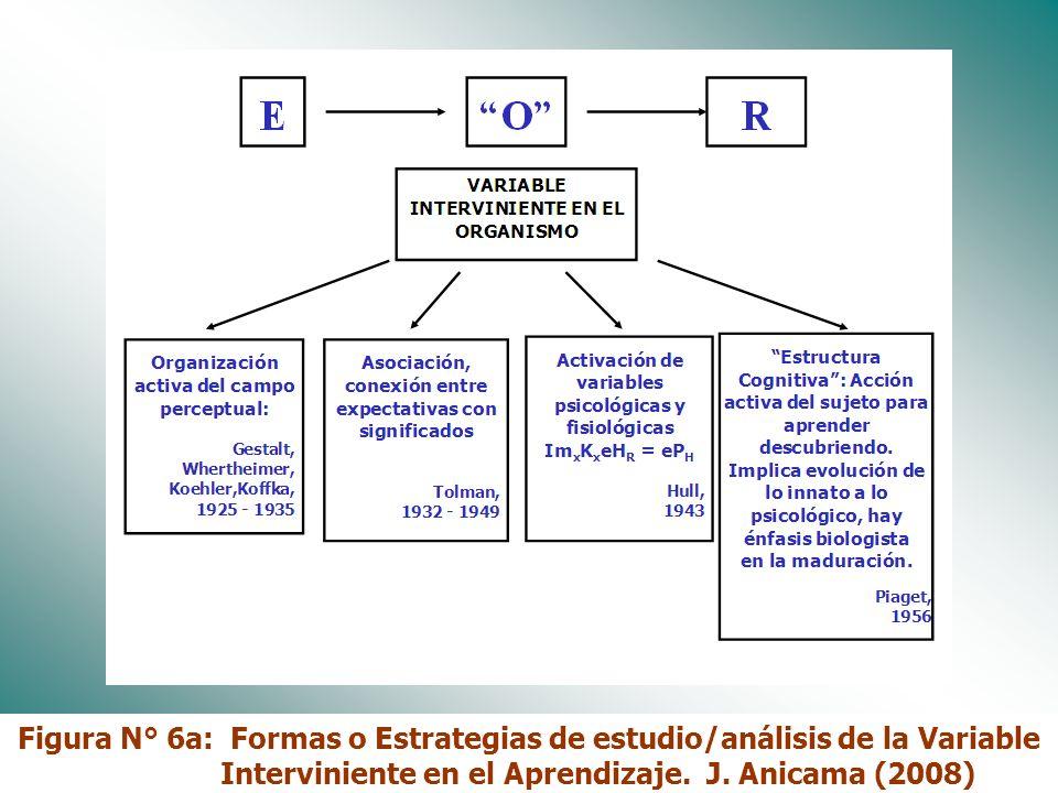 Figura N° 6a: Formas o Estrategias de estudio/análisis de la Variable