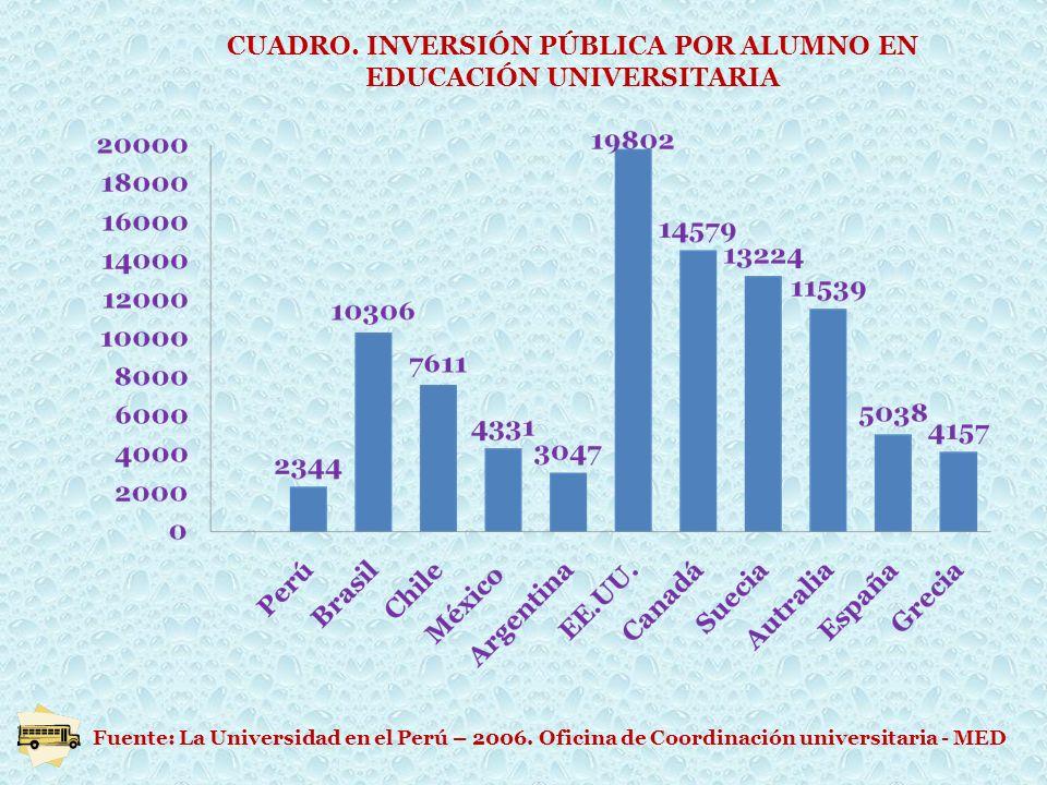 CUADRO. INVERSIÓN PÚBLICA POR ALUMNO EN EDUCACIÓN UNIVERSITARIA