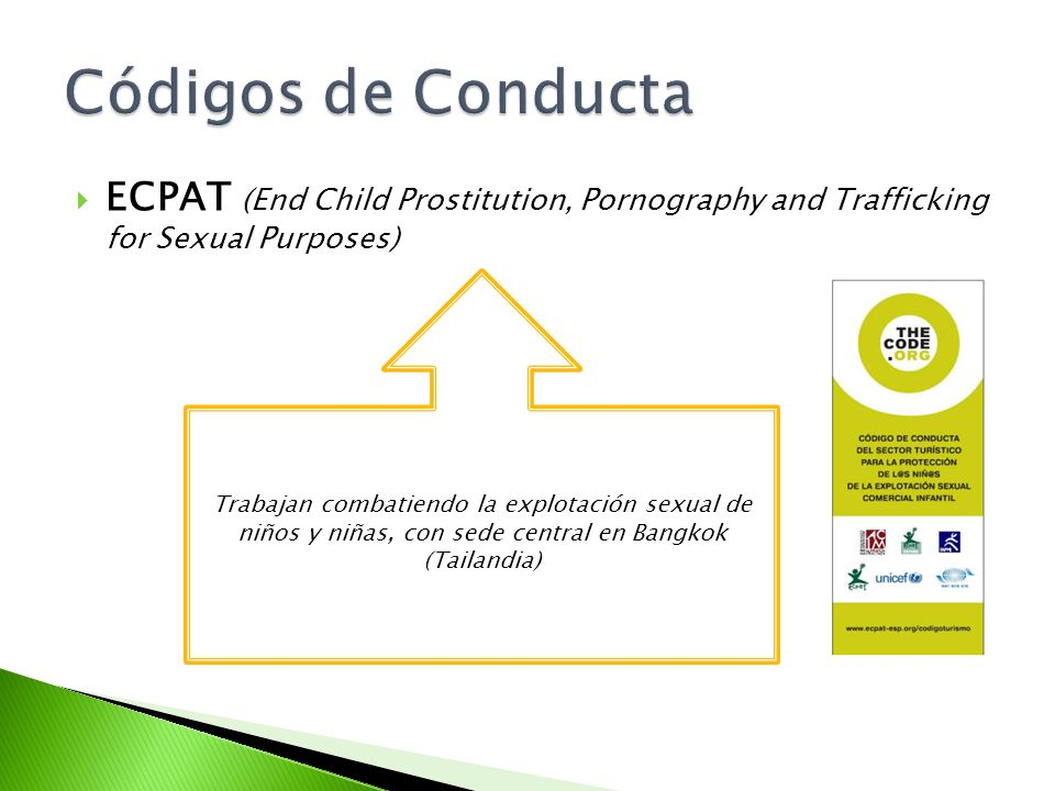 Códigos de ConductaECPAT (End Child Prostitution, Pornography and Trafficking for Sexual Purposes)