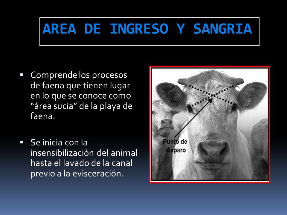 AREA DE INGRESO Y SANGRIA