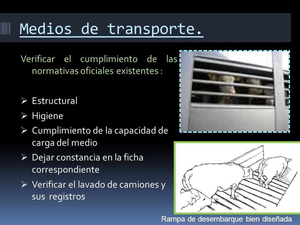 Medios de transporte. Verificar el cumplimiento de las normativas oficiales existentes : Estructural.