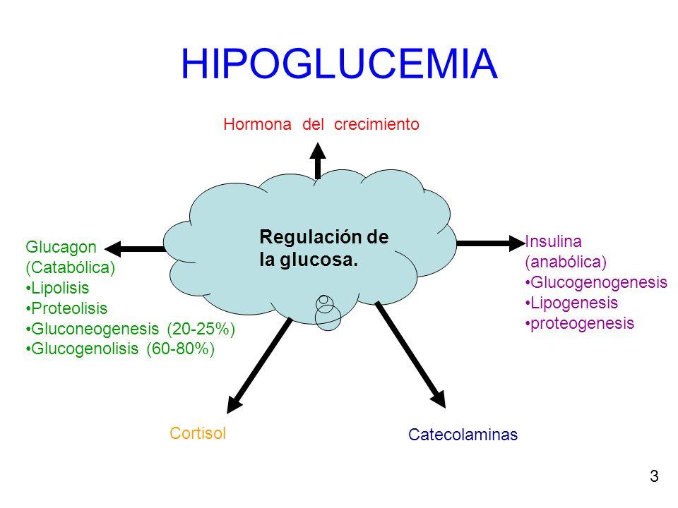 HIPOGLUCEMIA Regulación de la glucosa. Hormona del crecimiento