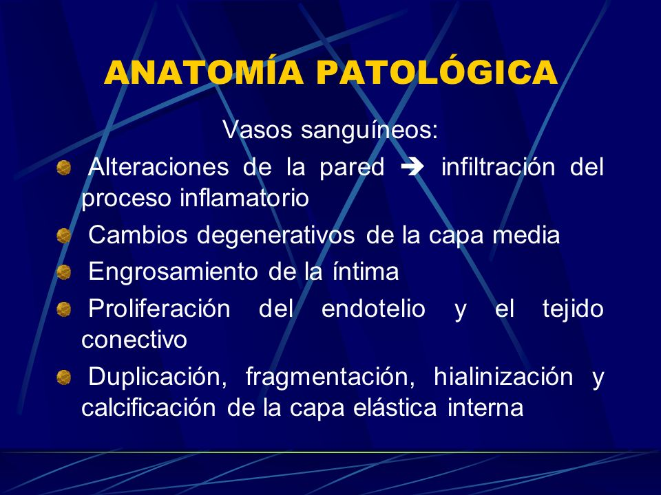 ANATOMÍA PATOLÓGICA Vasos sanguíneos:
