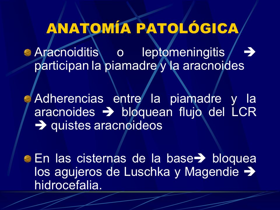 ANATOMÍA PATOLÓGICA Aracnoiditis o leptomeningitis  participan la piamadre y la aracnoides.