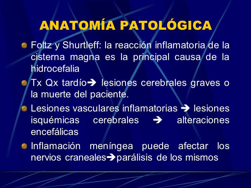 ANATOMÍA PATOLÓGICA Foltz y Shurtleff: la reacción inflamatoria de la cisterna magna es la principal causa de la hidrocefalia.