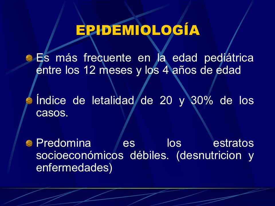 EPIDEMIOLOGÍA Es más frecuente en la edad pediátrica entre los 12 meses y los 4 años de edad. Índice de letalidad de 20 y 30% de los casos.