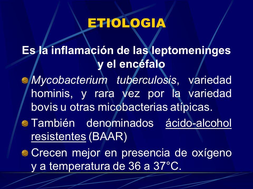 Es la inflamación de las leptomeninges y el encéfalo