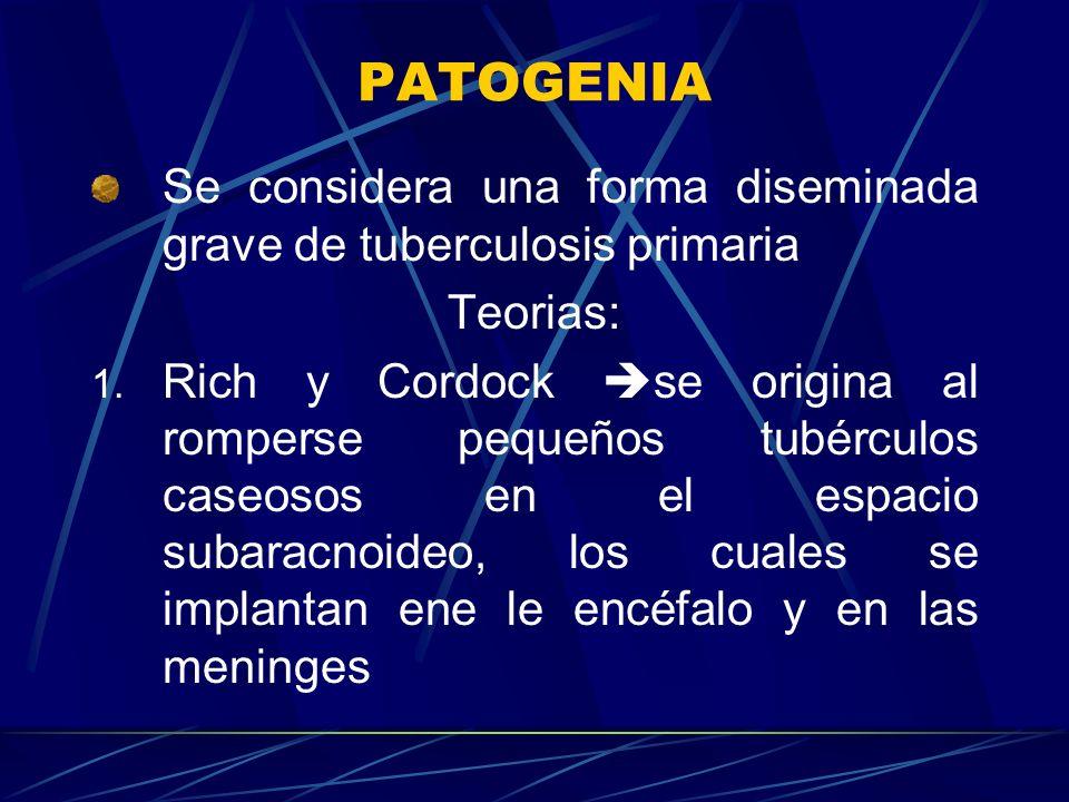 PATOGENIA Se considera una forma diseminada grave de tuberculosis primaria. Teorias:
