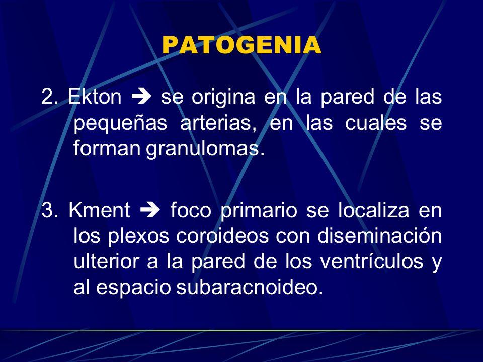 PATOGENIA 2. Ekton  se origina en la pared de las pequeñas arterias, en las cuales se forman granulomas.