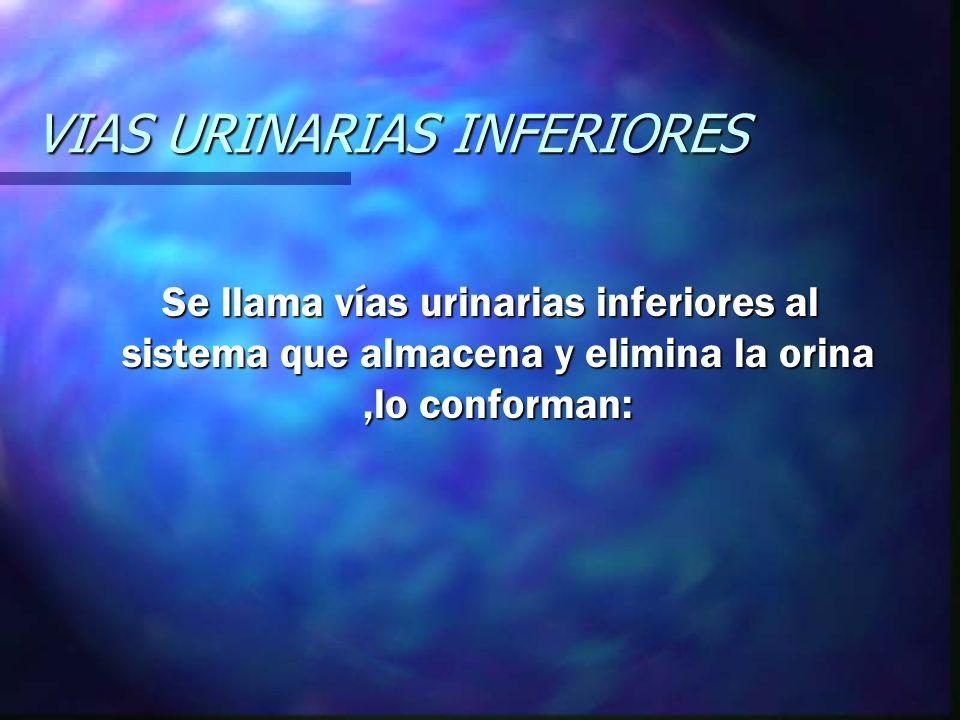 VIAS URINARIAS INFERIORES