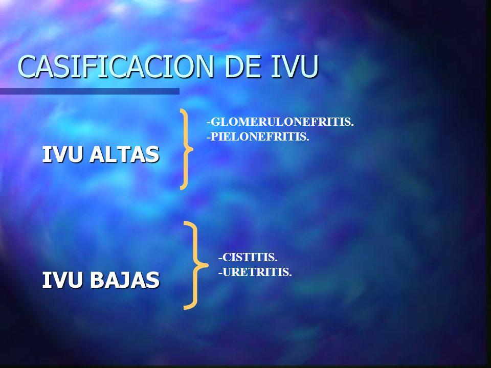 CASIFICACION DE IVU IVU ALTAS IVU BAJAS -GLOMERULONEFRITIS.