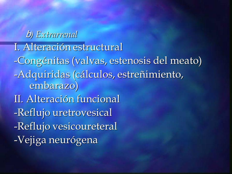 I. Alteración estructural -Congénitas (valvas, estenosis del meato)