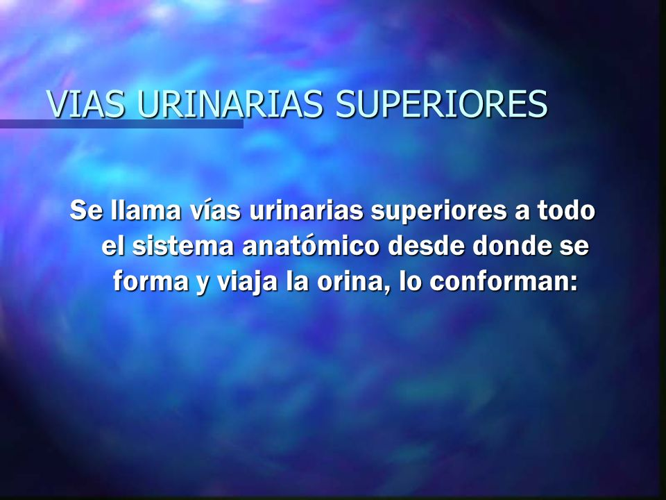 VIAS URINARIAS SUPERIORES