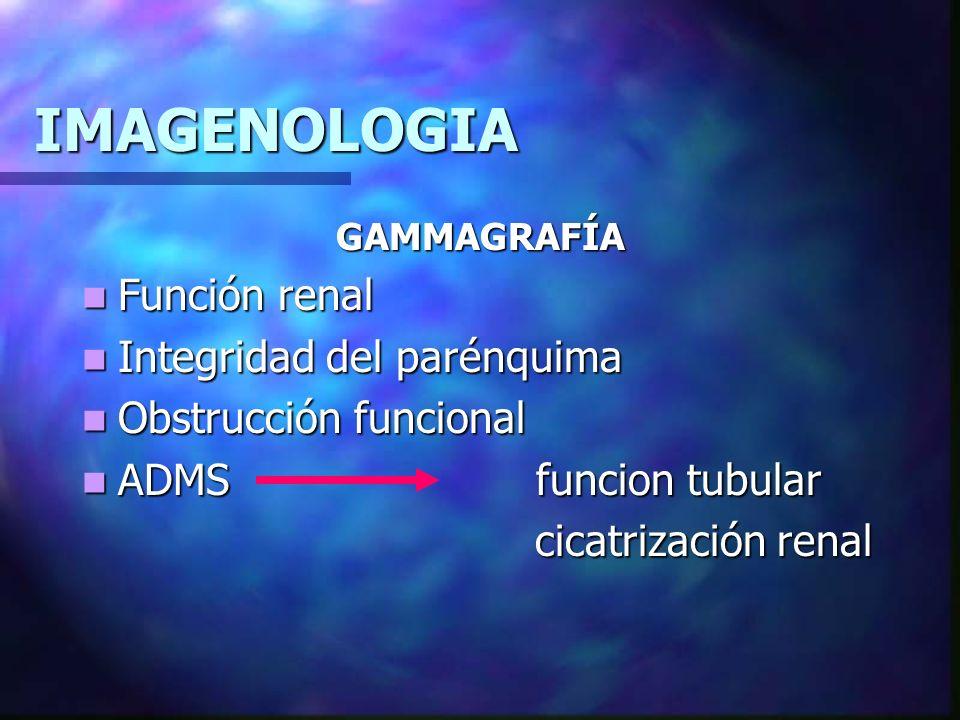 IMAGENOLOGIA Función renal Integridad del parénquima