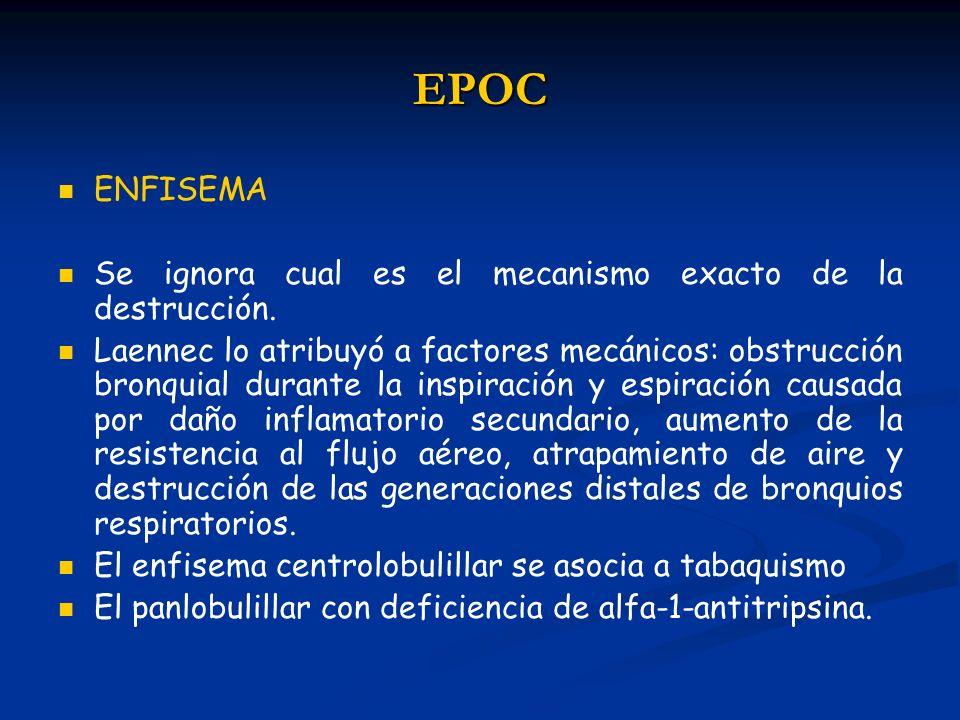 EPOC ENFISEMA Se ignora cual es el mecanismo exacto de la destrucción.