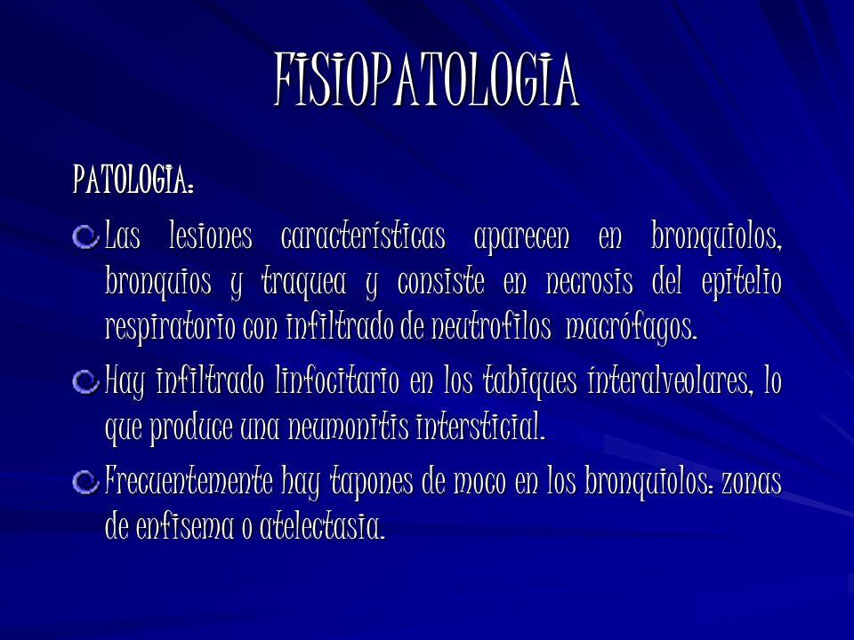 FISIOPATOLOGIA PATOLOGIA:
