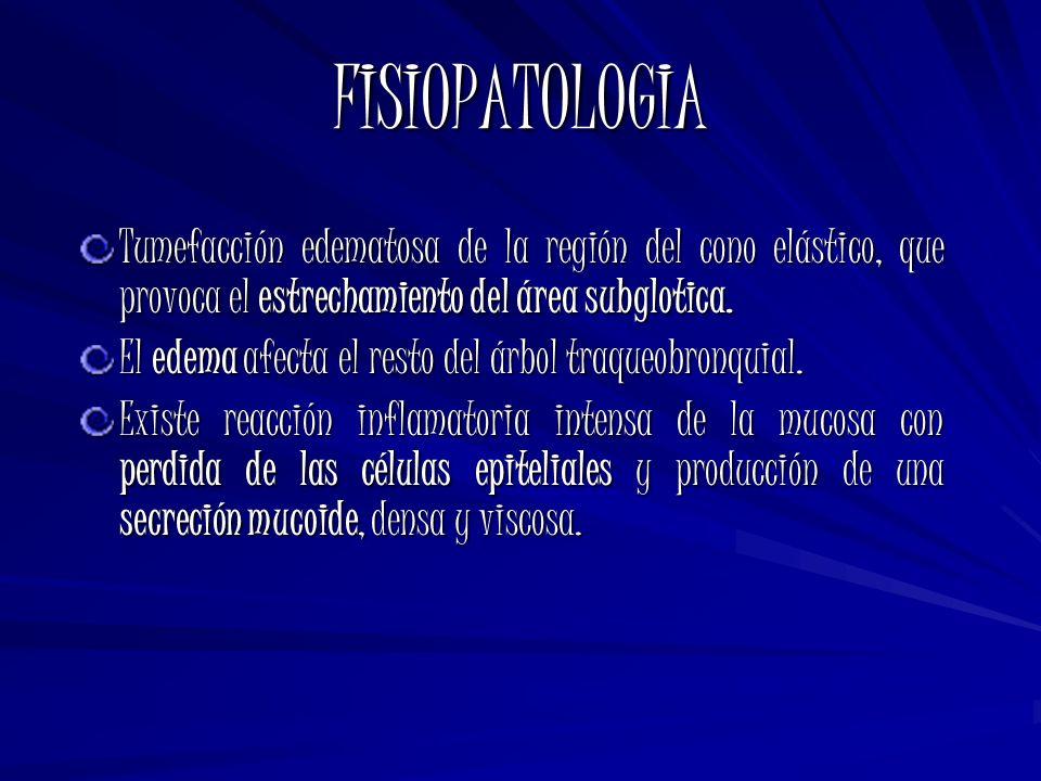 FISIOPATOLOGIA Tumefacción edematosa de la región del cono elástico, que provoca el estrechamiento del área subglotica.