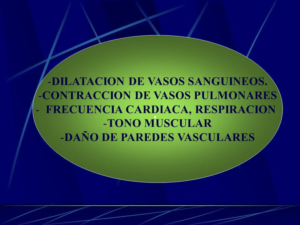DILATACION DE VASOS SANGUINEOS. CONTRACCION DE VASOS PULMONARES