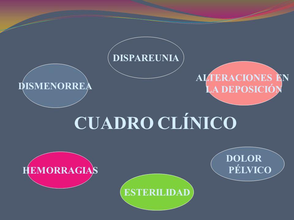 CUADRO CLÍNICO DISPAREUNIA ALTERACIONES EN DISMENORREA LA DEPOSICIÓN
