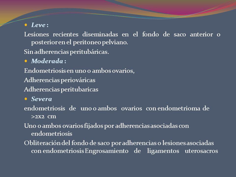 Leve :Lesiones recientes diseminadas en el fondo de saco anterior o posterior en el peritoneo pelviano.