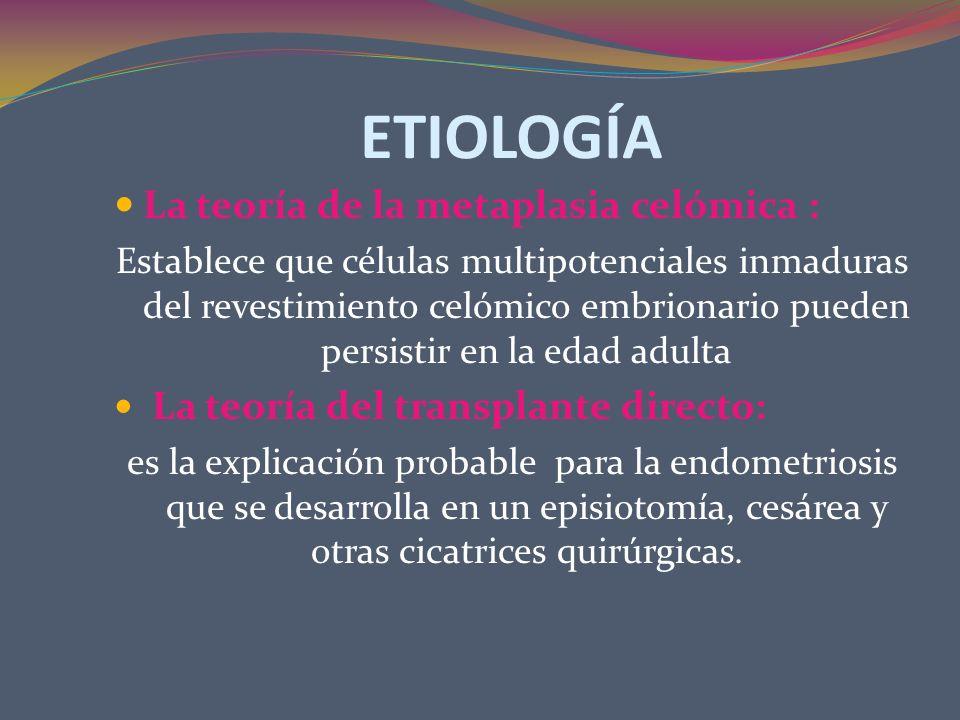 ETIOLOGÍA La teoría de la metaplasia celómica :