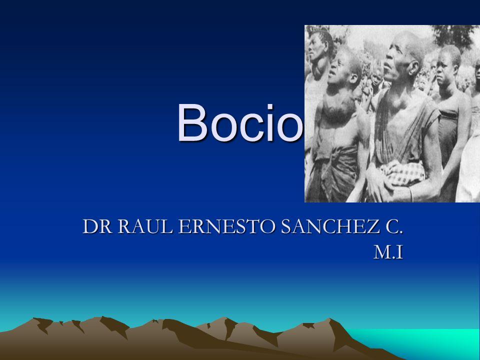 DR RAUL ERNESTO SANCHEZ C. M.I