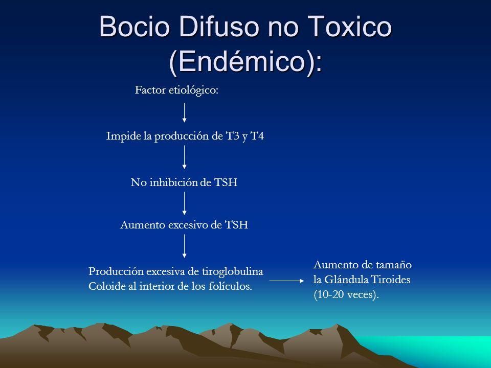 Bocio Difuso no Toxico (Endémico):