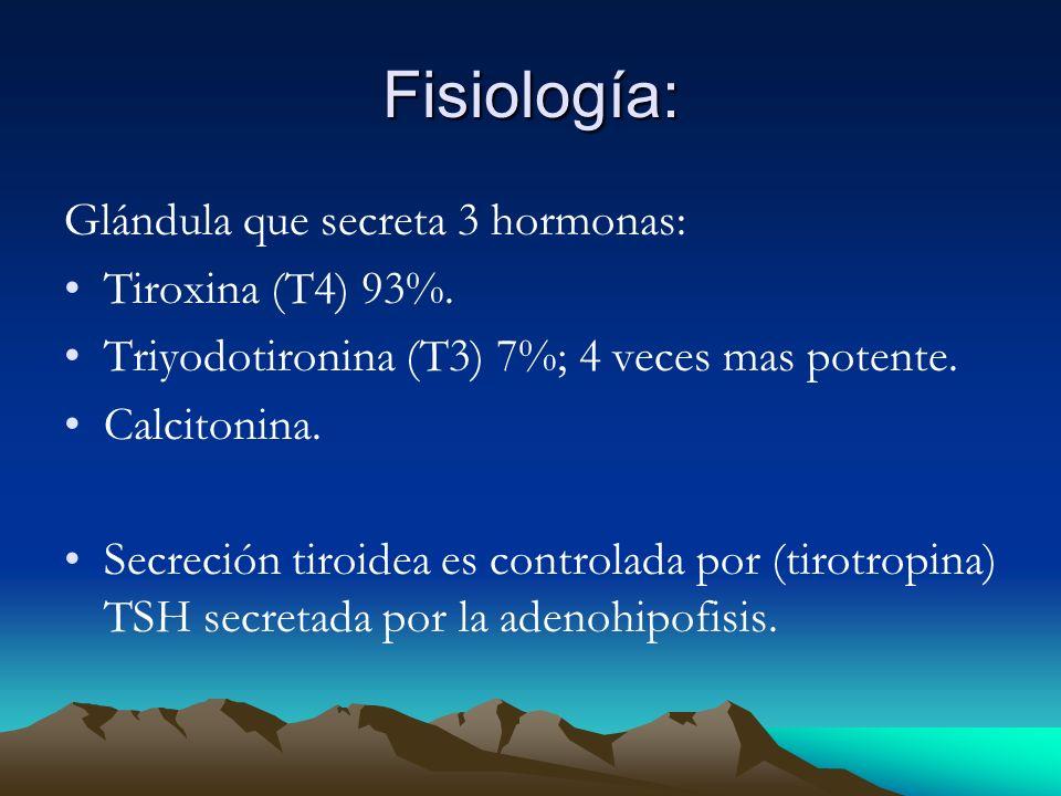 Fisiología: Glándula que secreta 3 hormonas: Tiroxina (T4) 93%.