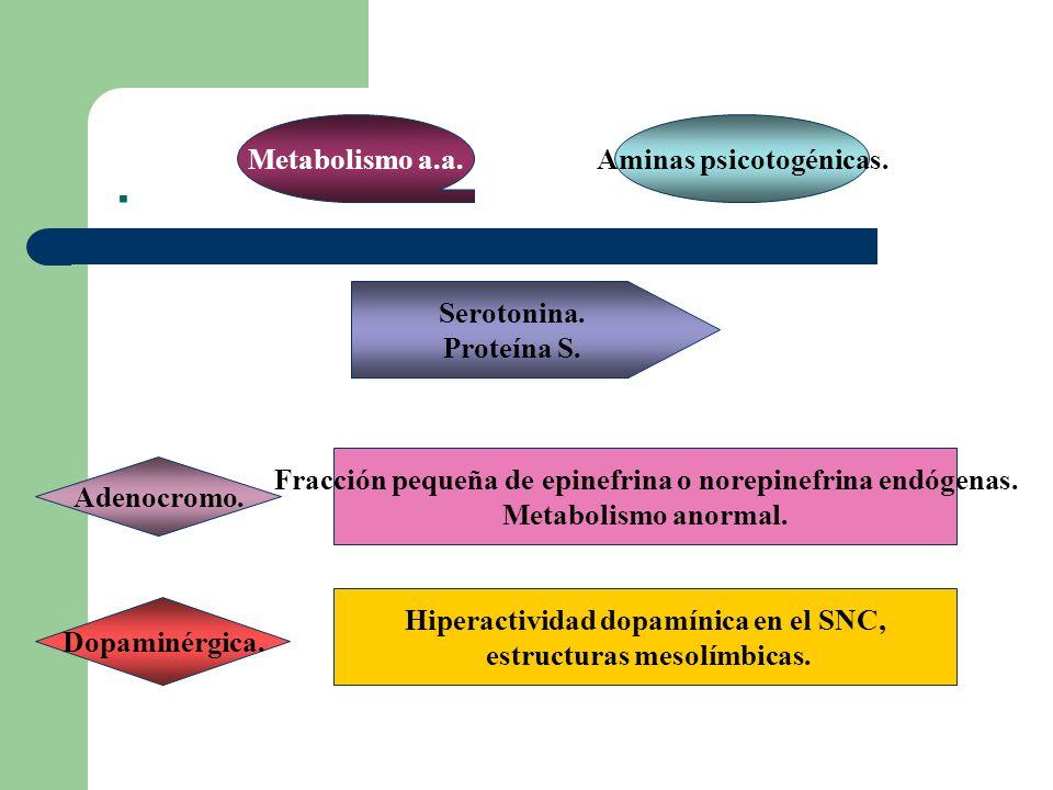 . Metabolismo a.a. Aminas psicotogénicas. Serotonina. Proteína S.