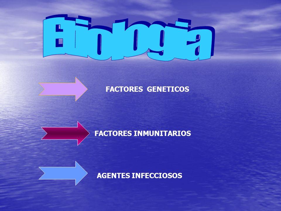 Etiologia FACTORES GENETICOS FACTORES INMUNITARIOS AGENTES INFECCIOSOS