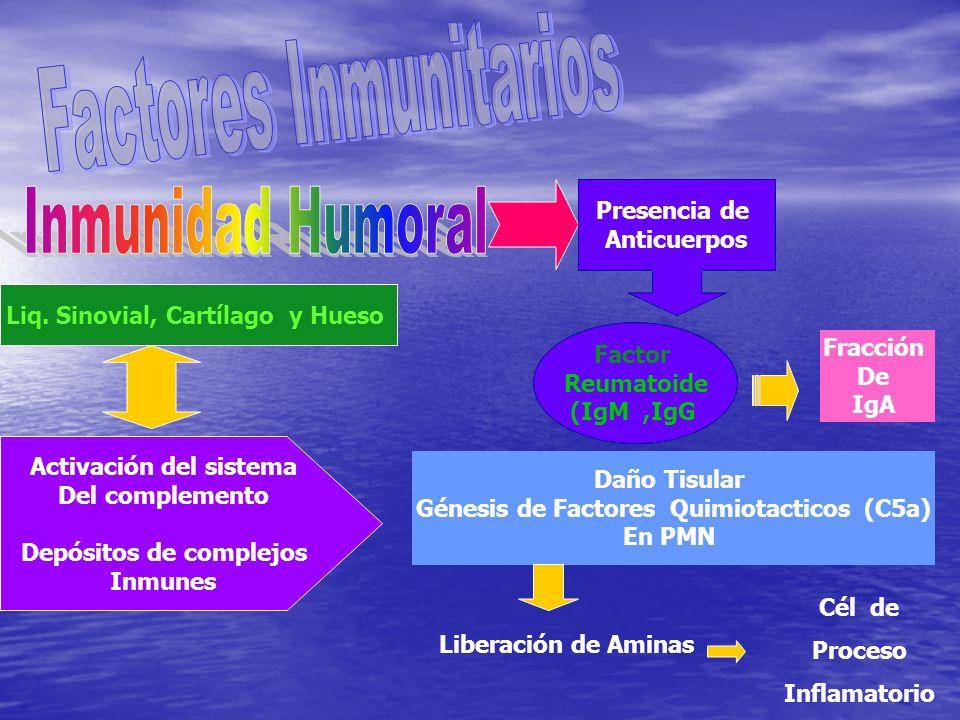 Factores Inmunitarios