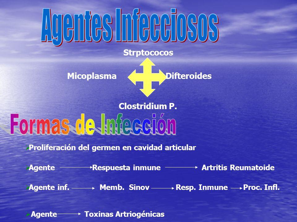 Agentes Infecciosos Formas de Infección Strptococos Micoplasma