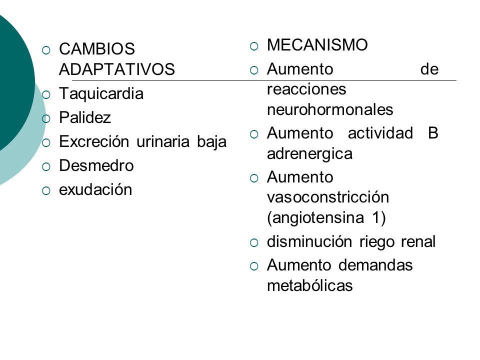 MECANISMO Aumento de reacciones neurohormonales. Aumento actividad B adrenergica. Aumento vasoconstricción (angiotensina 1)