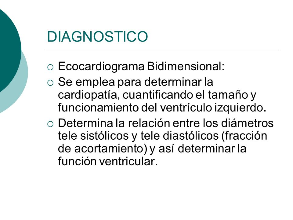 DIAGNOSTICO Ecocardiograma Bidimensional: