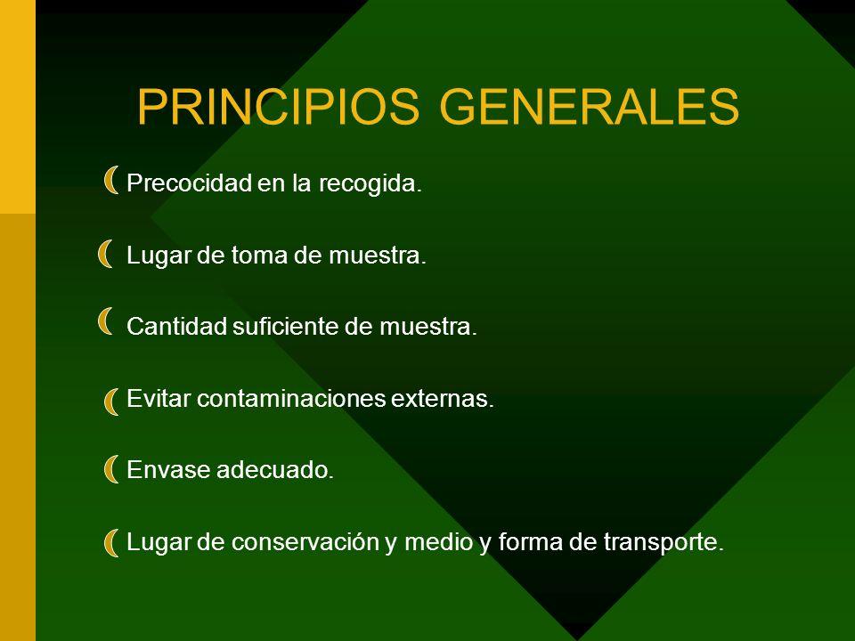 PRINCIPIOS GENERALES Precocidad en la recogida.