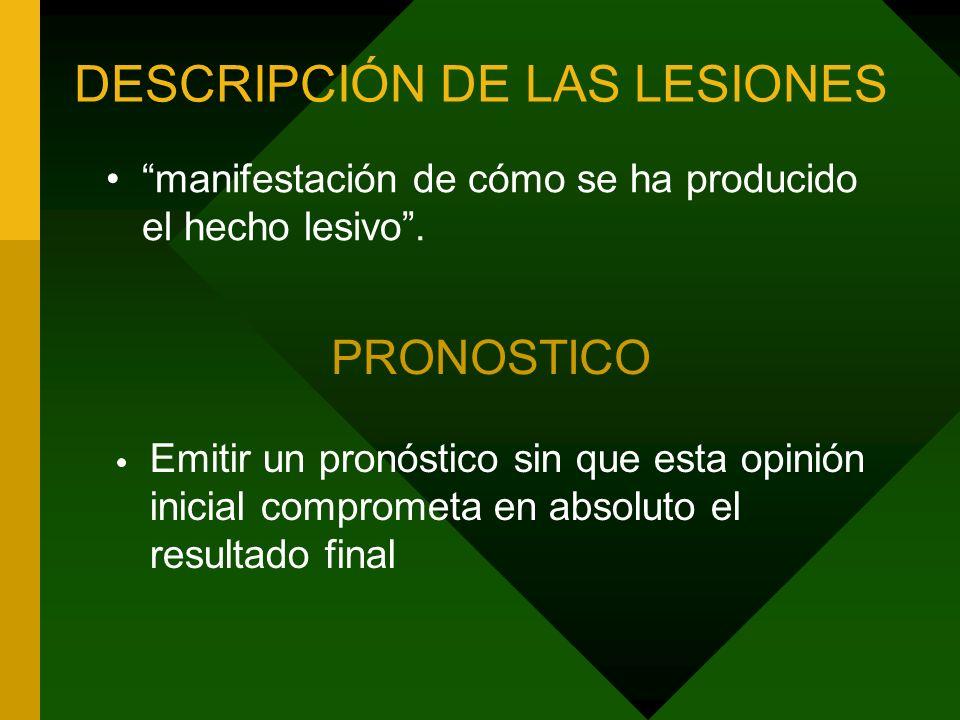 DESCRIPCIÓN DE LAS LESIONES