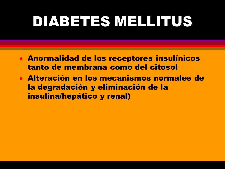 DIABETES MELLITUS Anormalidad de los receptores insulínicos tanto de membrana como del citosol.