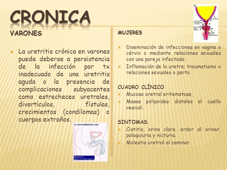 CRONICA VARONES.