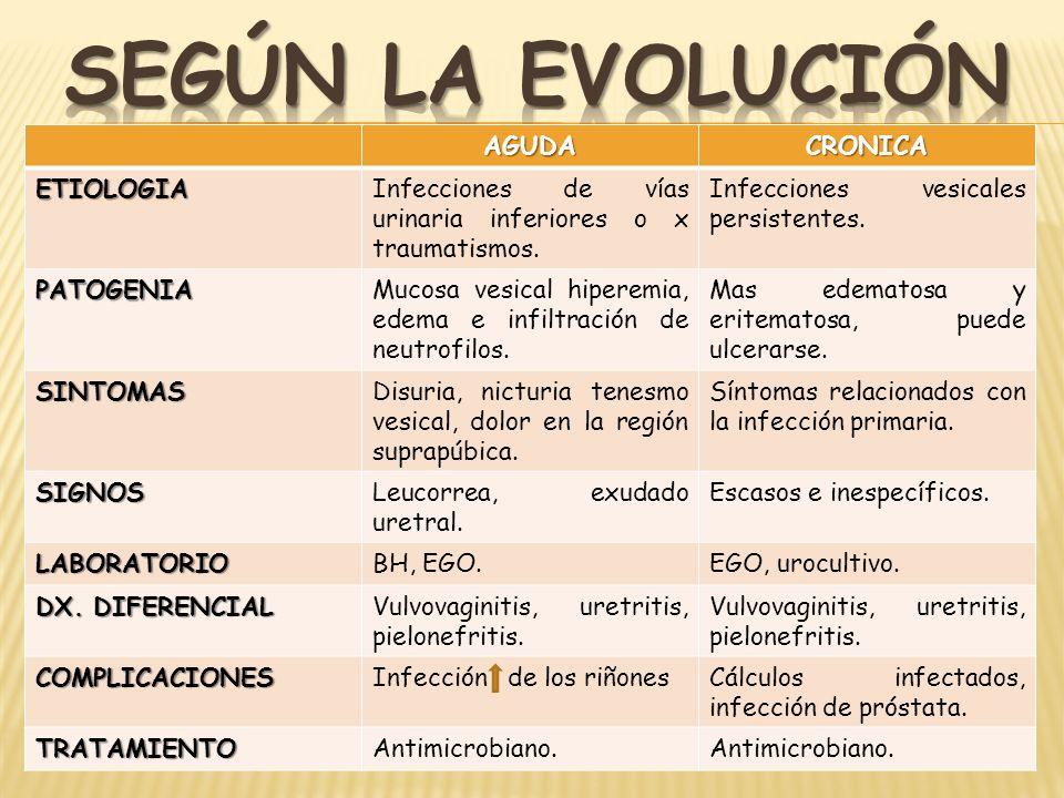 SEGÚN LA EVOLUCIÓN AGUDA CRONICA ETIOLOGIA