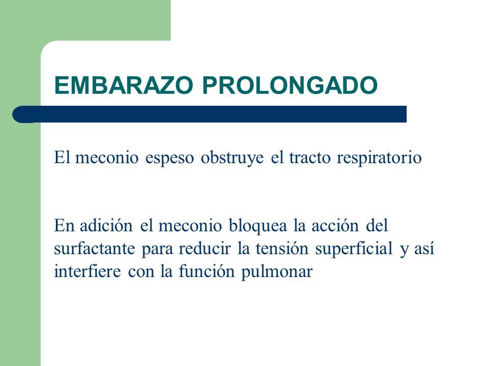 EMBARAZO PROLONGADO El meconio espeso obstruye el tracto respiratorio