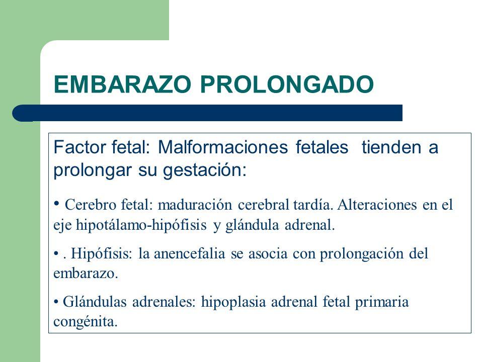 EMBARAZO PROLONGADO Factor fetal: Malformaciones fetales tienden a prolongar su gestación: