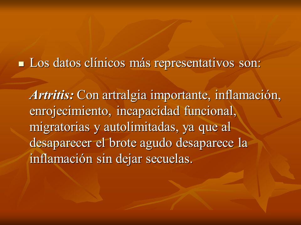 Los datos clínicos más representativos son: Artritis: Con artralgia importante, inflamación, enrojecimiento, incapacidad funcional, migratorias y autolimitadas, ya que al desaparecer el brote agudo desaparece la inflamación sin dejar secuelas.